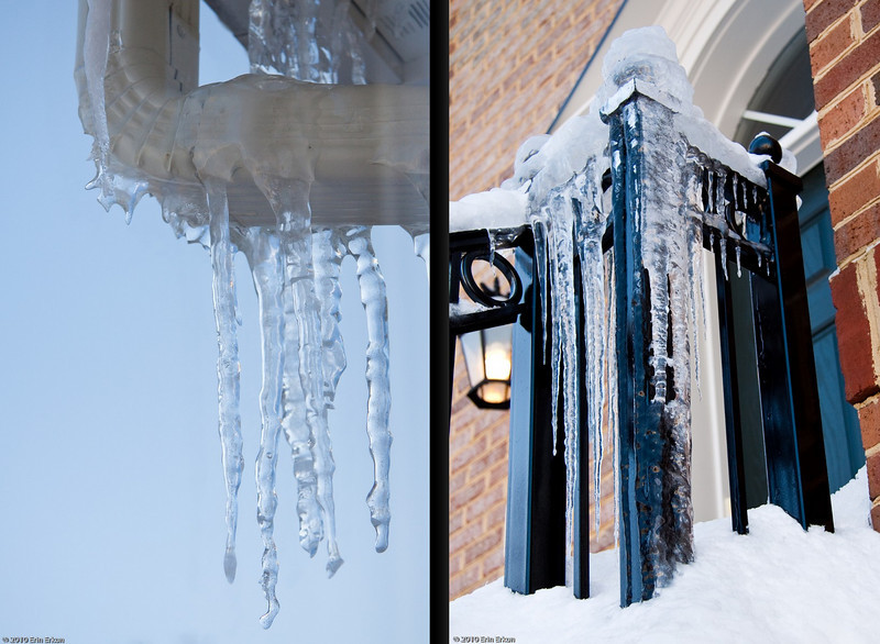 Snomageddon Aftermath - 11 February 2010<br /> Icicles