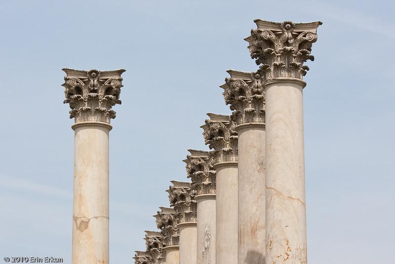 3 April 2010<br /> US National Arboretum<br /> Corinthian columns that were once at the US Capitol.
