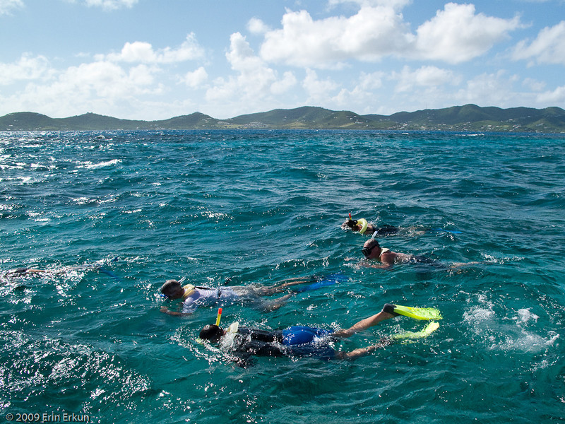 Mercury Cruise - R/T from Baltimore - November 30-December 12<br /> Snorkeling at Buck Island
