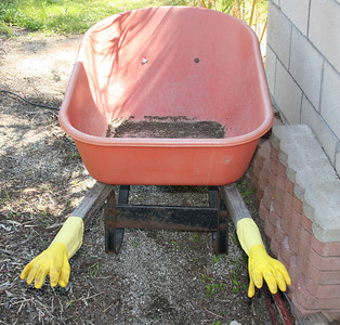 Come closer, little gardening person!