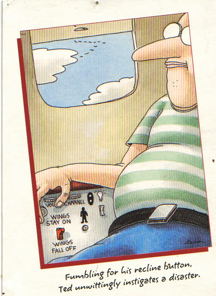 Wings Fall Off -- Image of a Far Side© cartoon by Gary Larson.