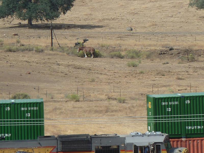 Tehachapi Loop railroad spiral loop, near Keene, California.