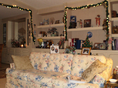 Some of our Christmas lights