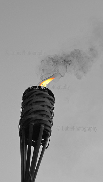 "Torch. Pixture size 15x30"""