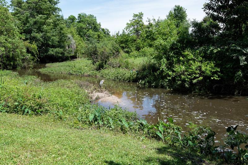 Creek on the estate of Jefferson Davis