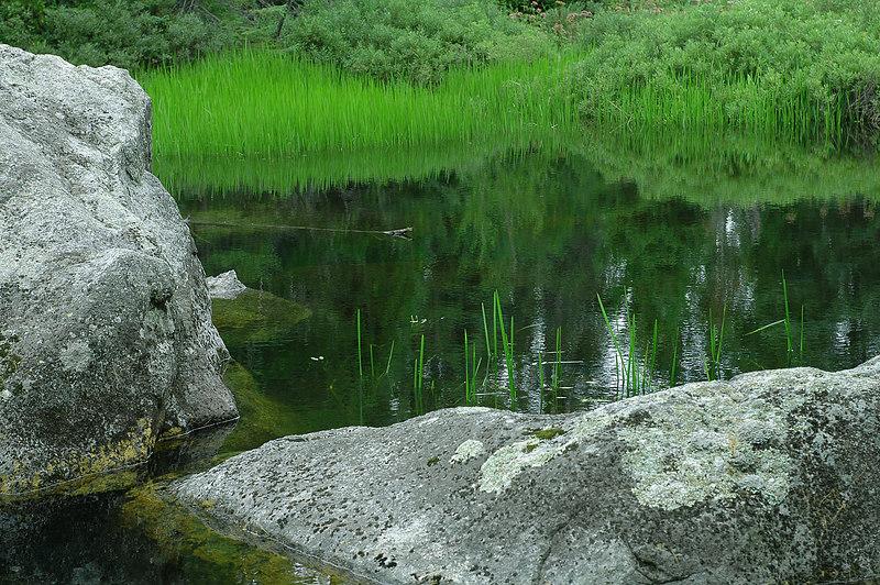 Stream near Rabbit Blanket Lake in Lake Superior Provincial Park