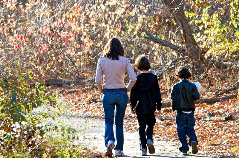Central Park, New York 2011