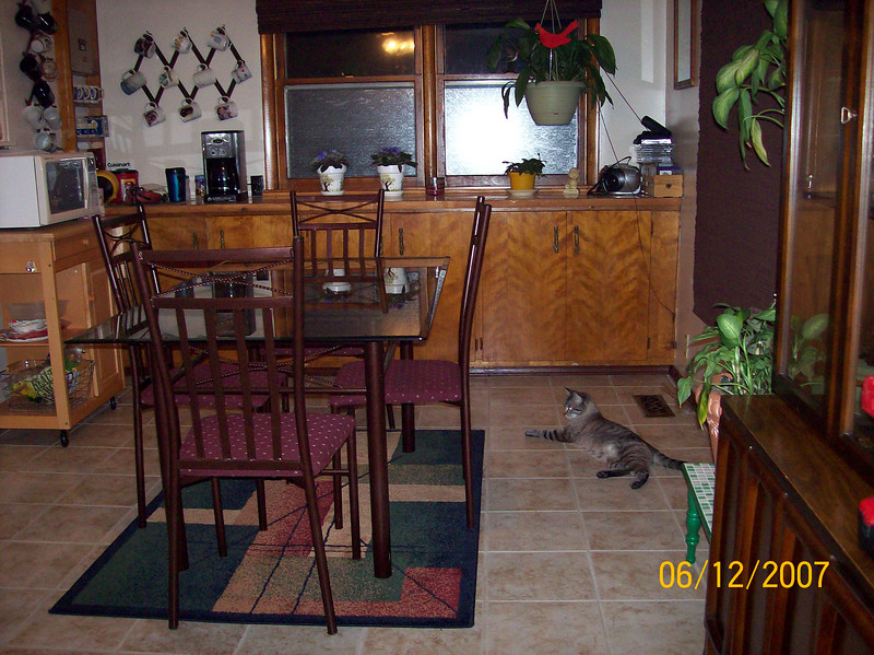 "Our ""new 2nd dining room"" & Smokey..."