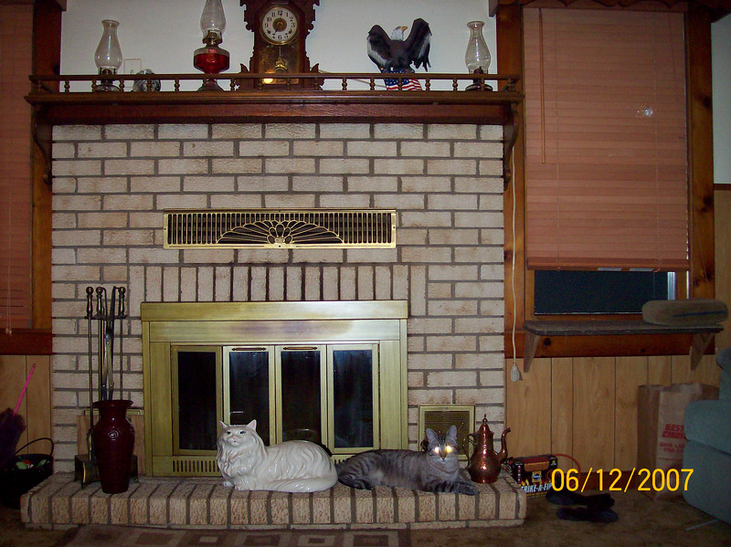 """Smokey & """"friend"""" on fireplace hearth and a new mantle"""