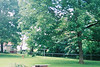Backyard 2005