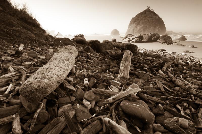 [Luffenholtz Beach 2010-10 019 Humboldt-CA-USA]