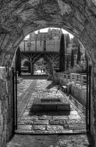 Robinson's Arch Courtyard