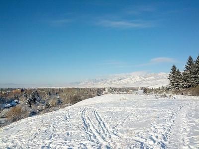 Montana 2013-14