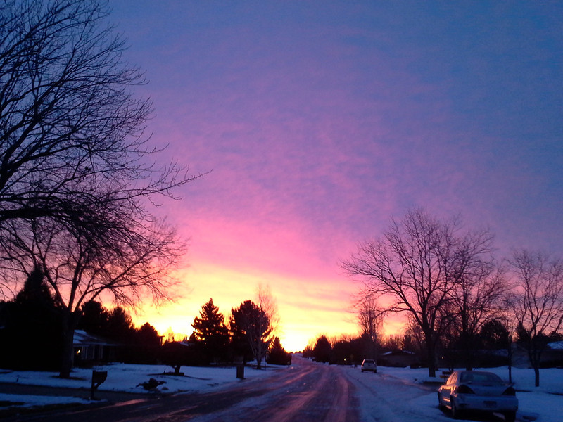 Here are a series of images from right outside our home, early one recent morning.