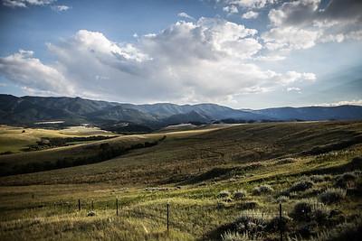 Montana-29334