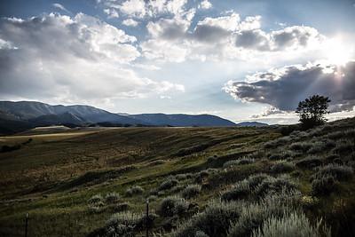 Montana-29337