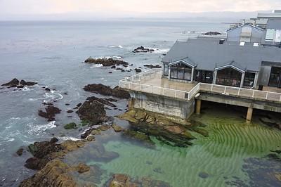 Monterey3/18