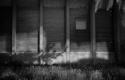 Montreal, Black and white, Brick Wall, Grass