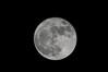 Super moon, 11/14/2016 - 1000mm mirror telescope lens