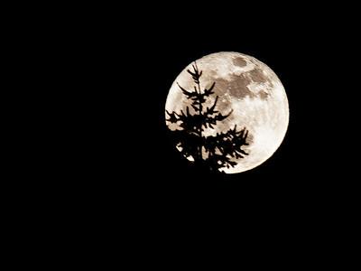 Moon at Perigee - 19 Mar 2011