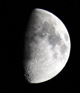 IMG_5904 Moon