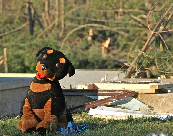 Brimfield still has a sense of humor! House is gone, but the watch dog remains.