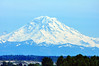 Mt Rainier taken while at Emerald Downs in Auburn Washington