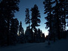 Daybreak while going up McKenzie Pass