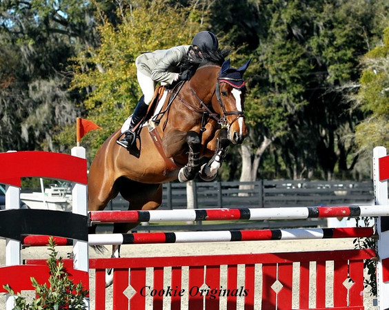 Bay horse jumping red and white jump, non recognizable rider