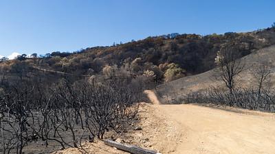 Morgan Fire burn area. III