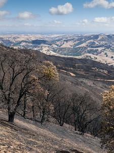 Morgan Fire burn area. I