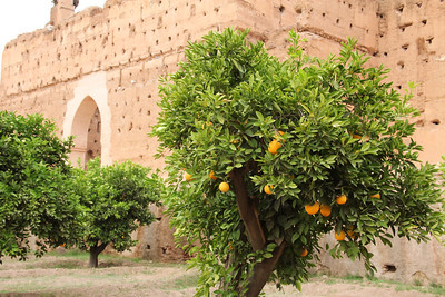 ruins in marrakech