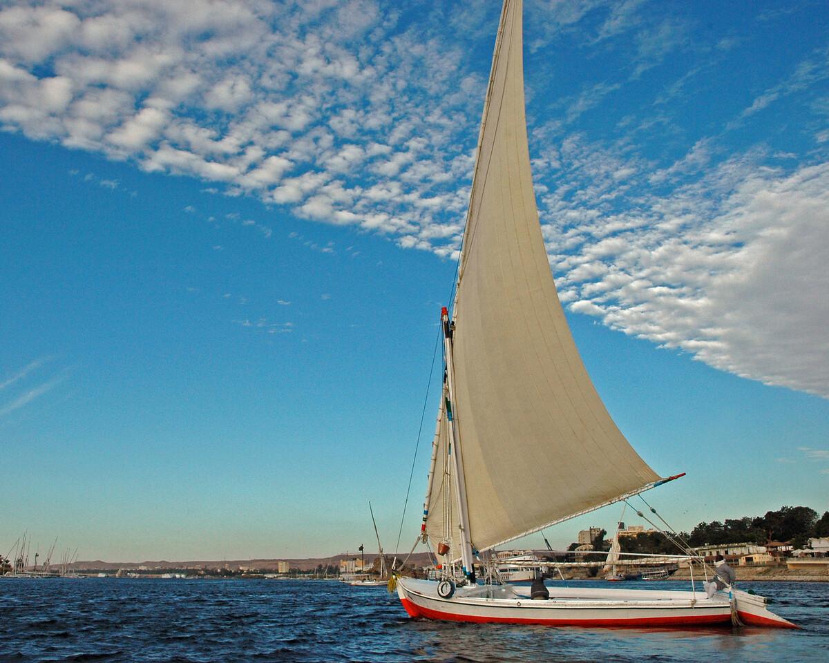 felluca sailing the nile