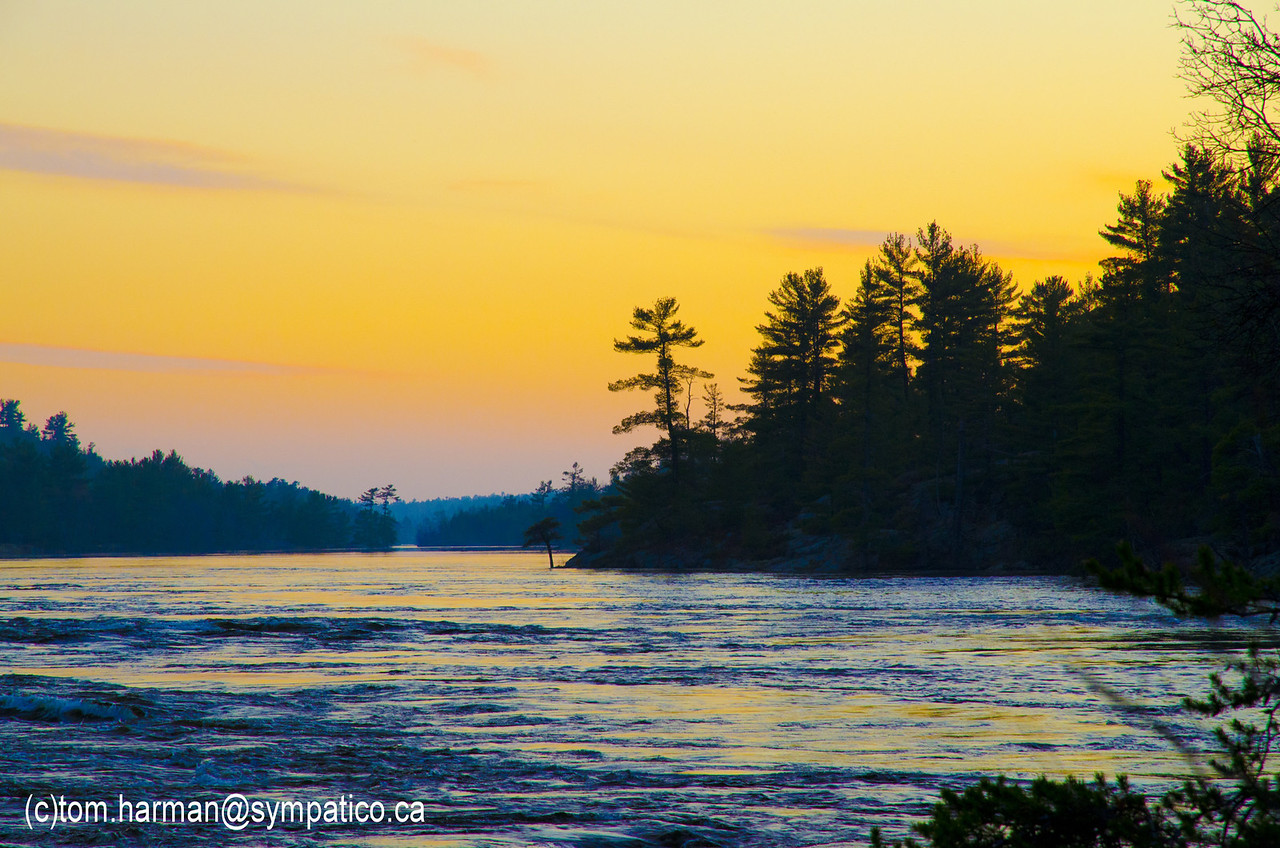 Photo by Tom Harman - French River 2011
