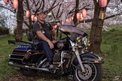 Motorcycle under the Sakura