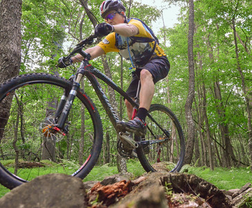 Log pile crossing at Hartwood Acres. Photo by Isabella Coelho, rider is me.
