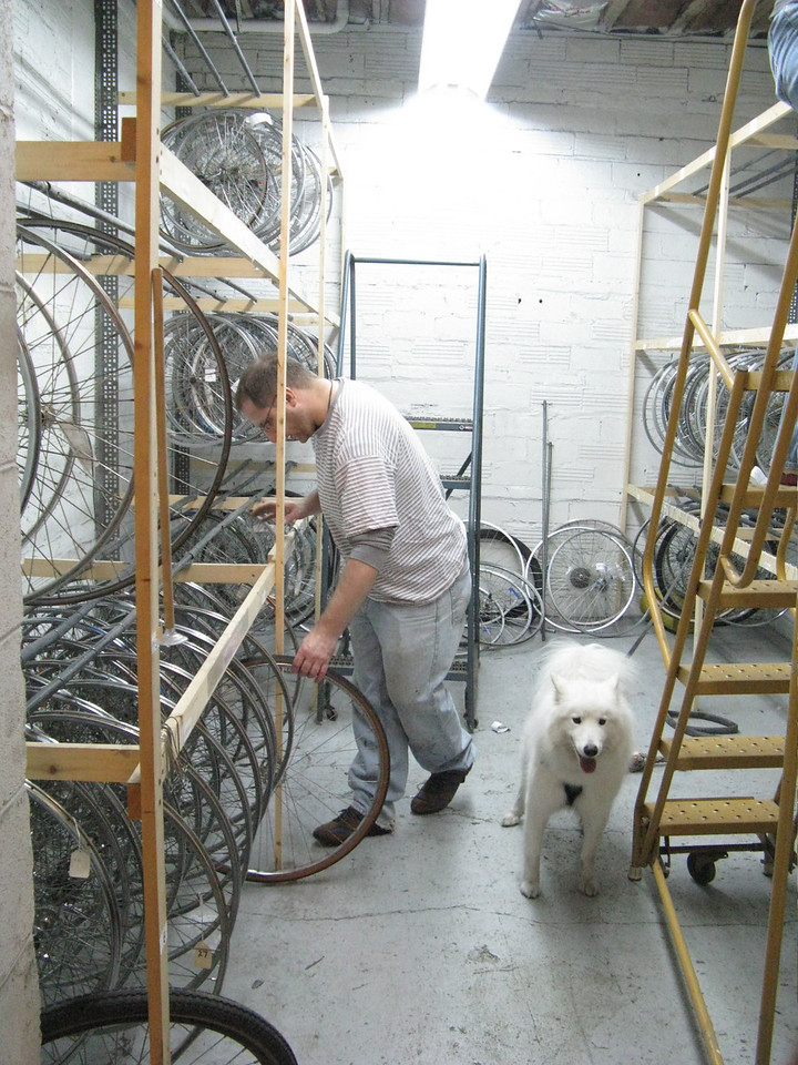 Volunteer, dog, and wheels, what else do you need?