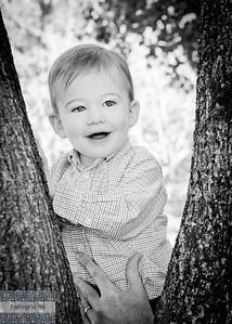 Alec in Tree bw-