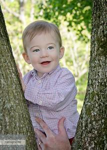 Alec in Tree-