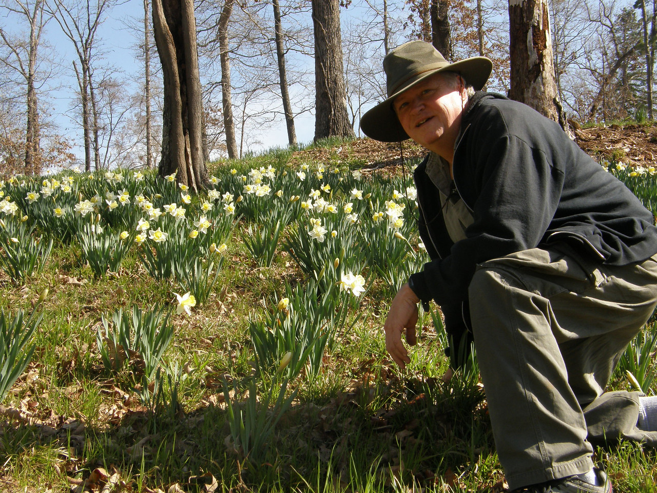 Me, checking out the Daffodils.