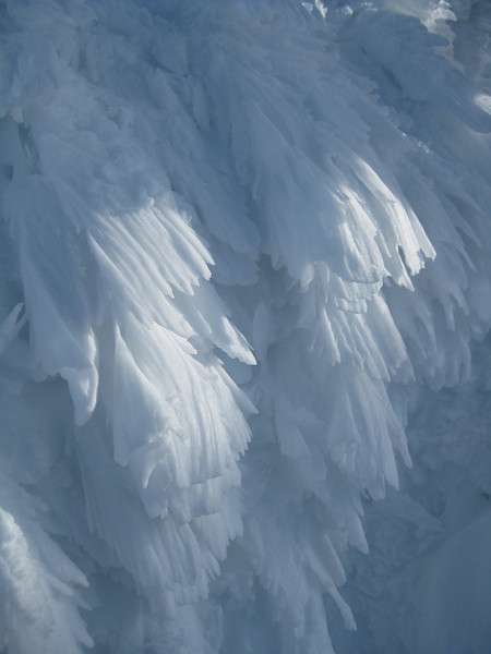 Rime ice which is everywhere above tree line