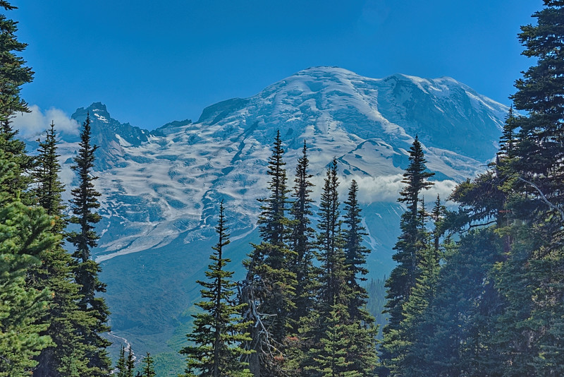 View of Mt. Rainier from Sunrise Visitor Center area