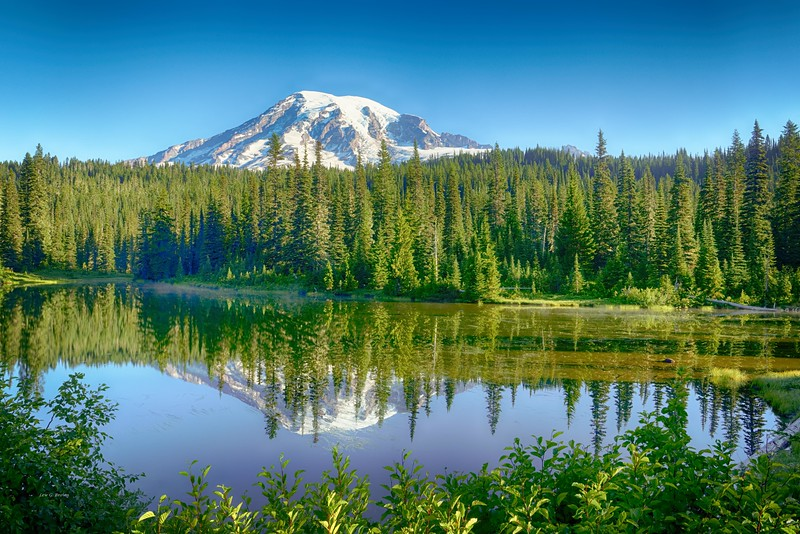 View of Mt. Rainier from Reflection Lakes area 1