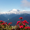 View of Mt. Rainier from Crystal Mountain Ski Area