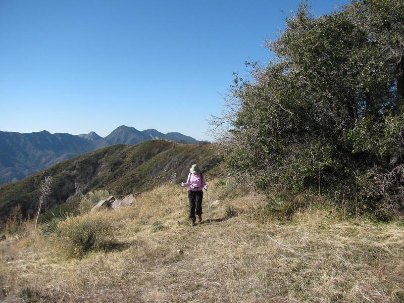 Nancy on the trail