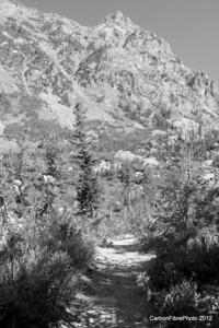 Little Agnes Mountain, Mt. Zirkel Wilderness