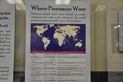 Pterosaur biogeography.