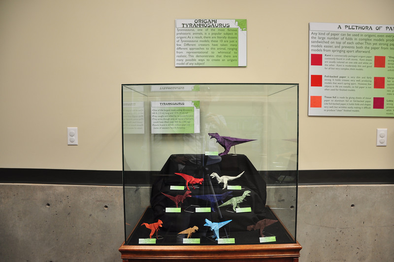 5 - Origami Tyrannosaurs Display