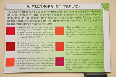 4 - Plethora of Paper Types