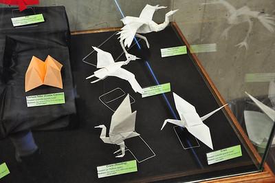 3b - Modern Origami Display